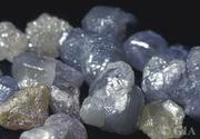 Natural Uncut and Rough Diamonds for sale